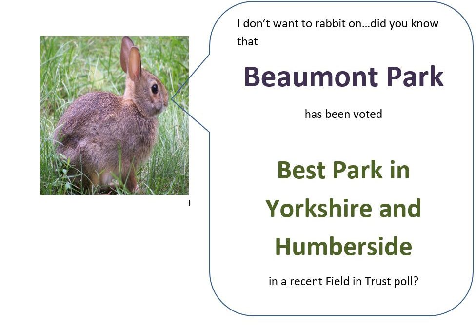 Beaumont Park wins Best Park in Yorkshire and the Humber!